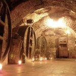 Visitar bodegas en Aranda de Duero