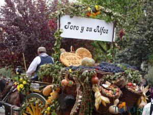 Fiesta de la vendimia de Toro