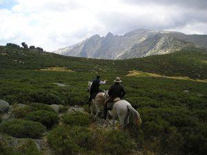 Ruta a caballo Sierra de Gredos