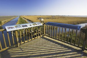 Mirador del Delta del Ebro