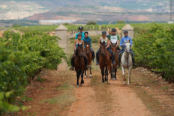Paseo a caballo entre viñedos por La Rioja