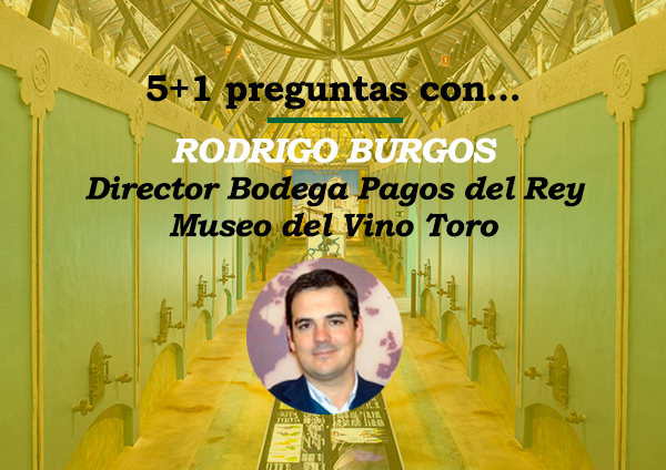 Bodega Pagos del Rey - Museo Vino Toro