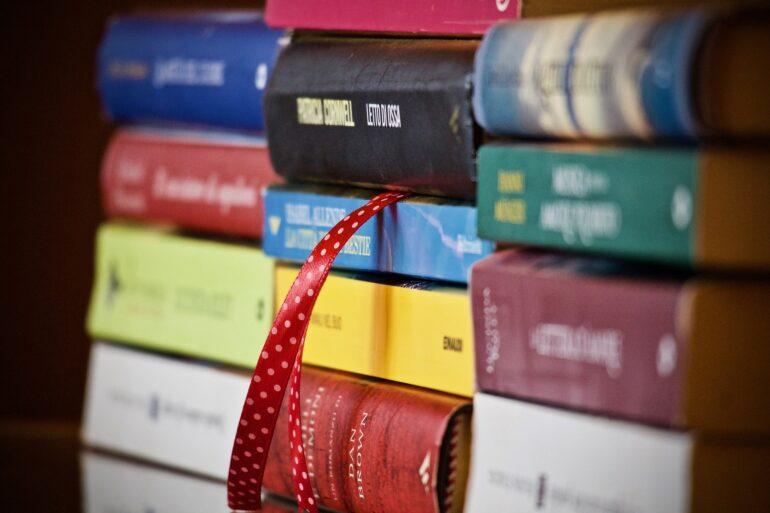 Seleccion libros de viajes para regalar